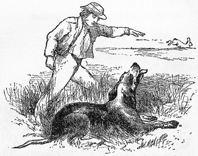 Охота рисунок