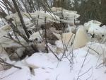ledyanye ukrasheniya v zamke snezhnoy korolevy. foto sergeya mokeeva 4