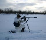 нелегальная охота