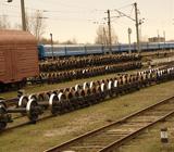 Железная дорога Беларусь