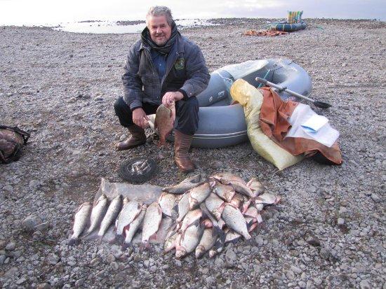 Находчивый рыболов. Фото Виктора Арнаутова, г. Кемерово