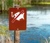 ограничения любительской рыбалки