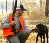 Охотиться с собаками