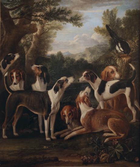 псовые охотники
