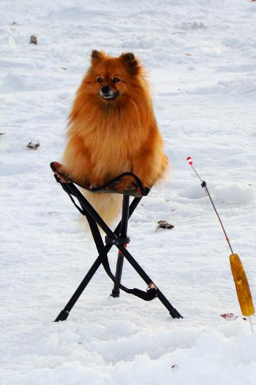 зимняя рыбалка в Хакасии