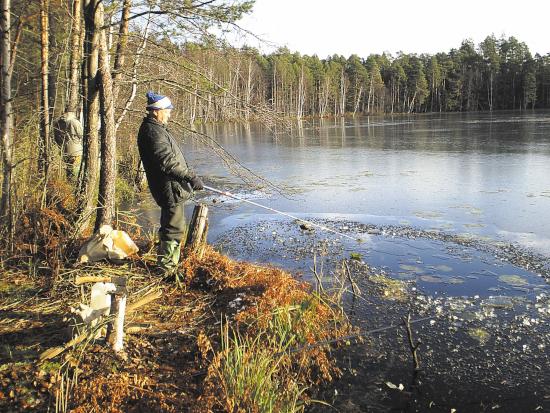 заняться рыбной ловлей