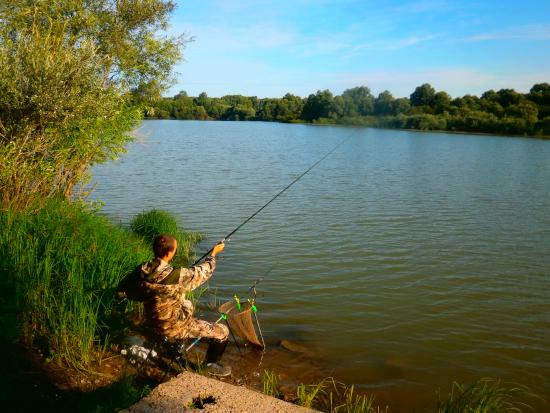 ловля плотвы в августе