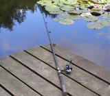 региональная Федерация рыболовного спорта