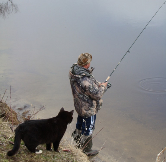 Лов на Волге