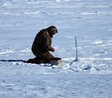 Свободно ловить рыбу