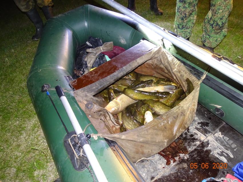 Браконьеров с электроудочкой и острогой поймали в Забайкалье