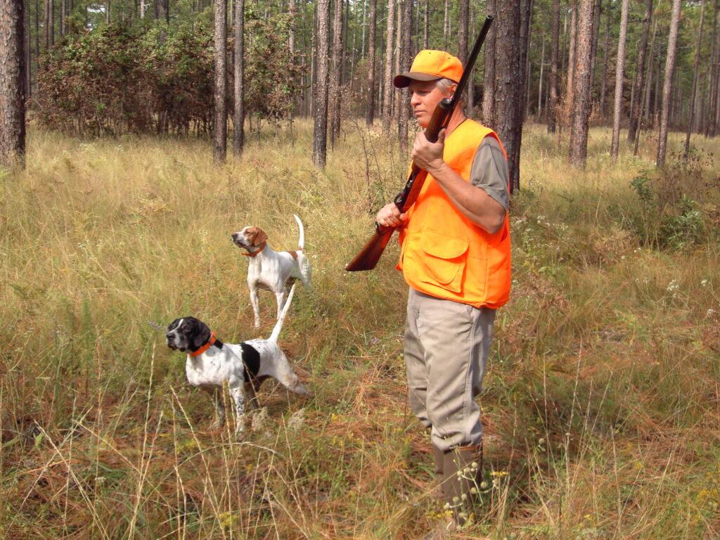 Новые Правила охоты утверждены