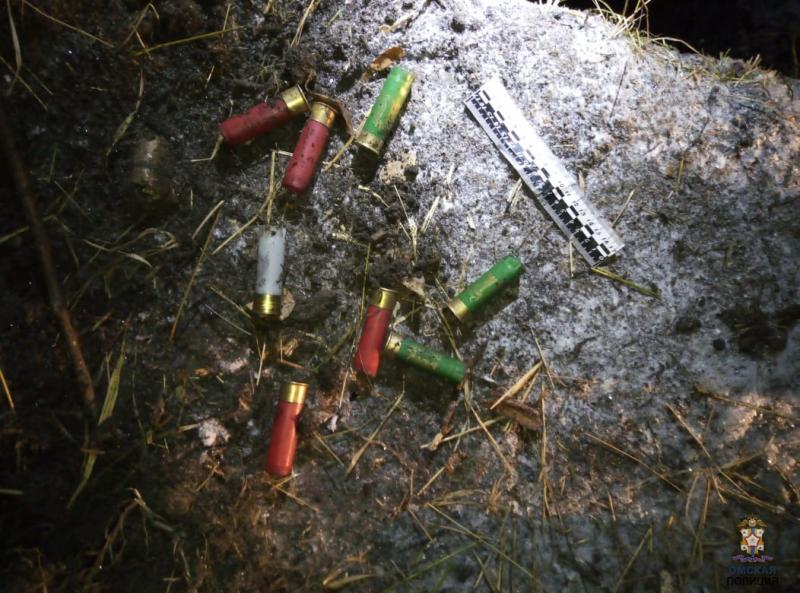 В Омской области раскрыта нелегальная охота на барсуков