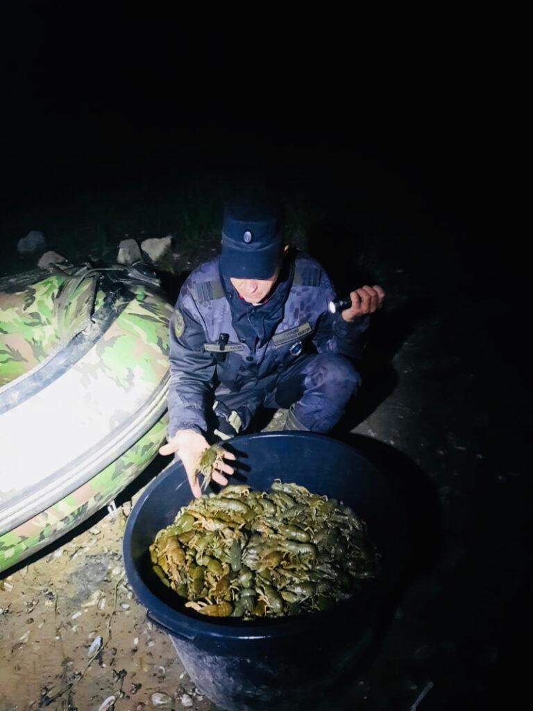 В Московской области вооруженные браконьеры незаконно ловили тысячи раков