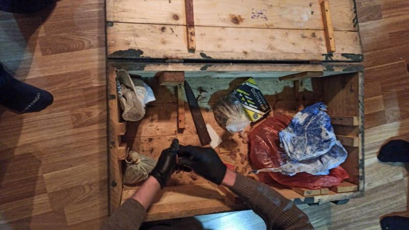 В Татарстане поймали участников незаконной охоты на кабанов