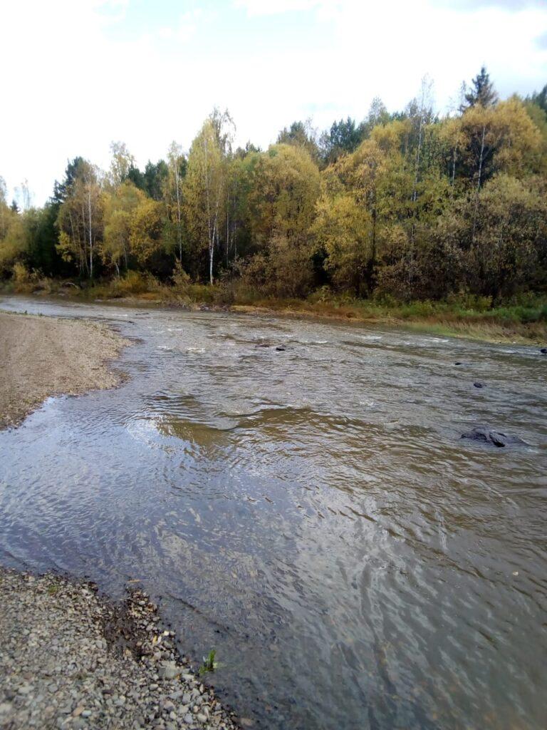 Как в Красноярском крае проходит акция в защиту малых рек и водоемов