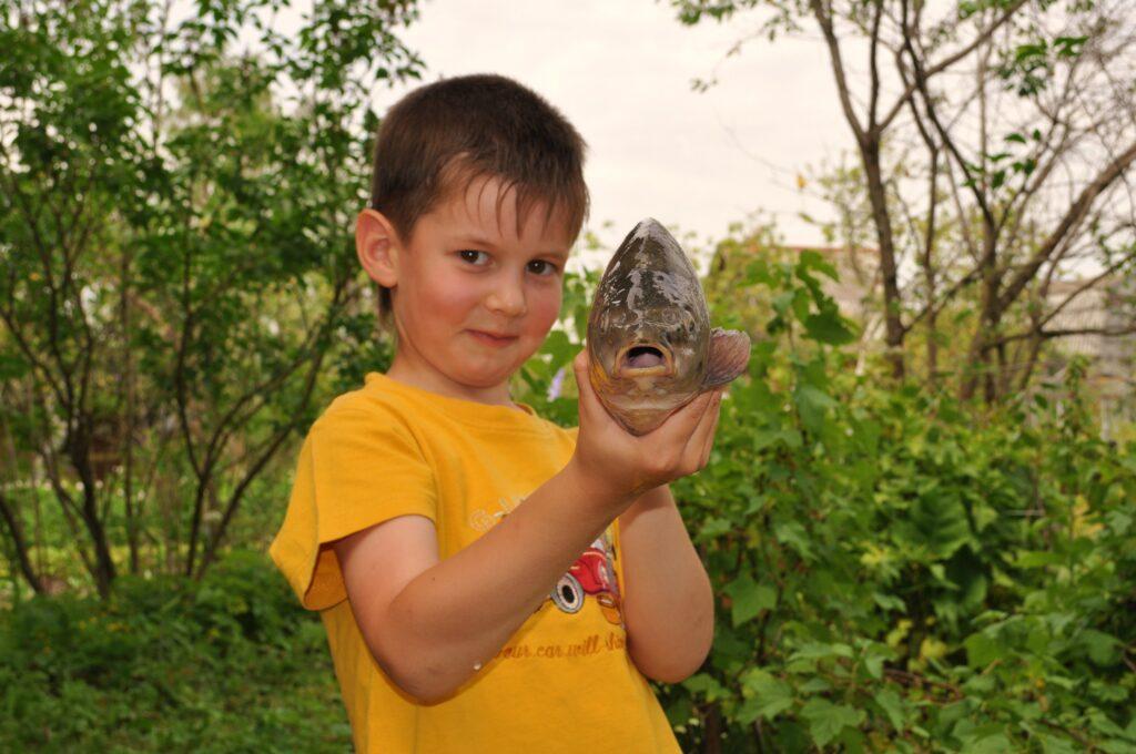 Воспоминания рыболова-любителя