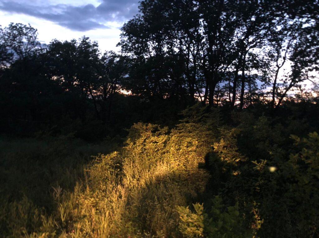 Житель Волгоградской области погиб на охоте