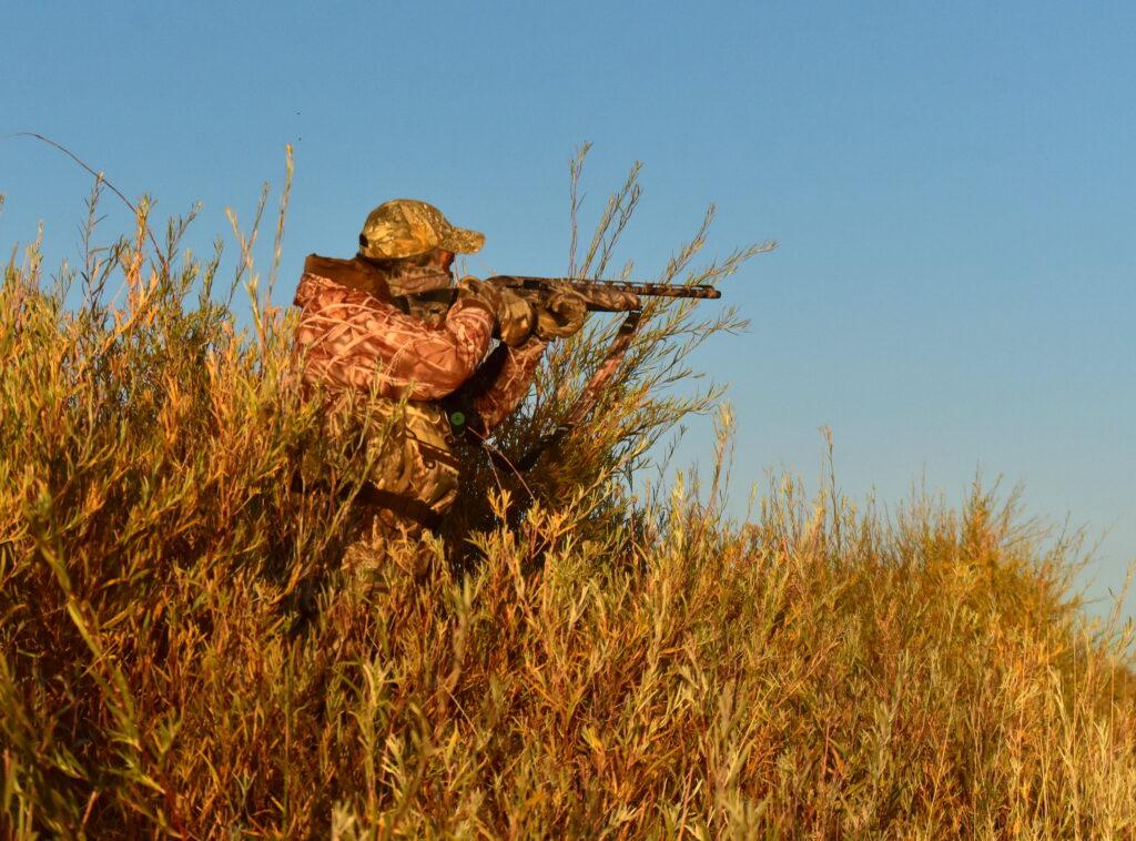 Минприроды России подготовило коррективы в Правила охоты