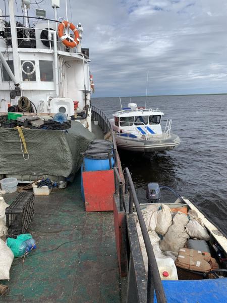 На Таймыре рыбаки попались на масштабном браконьерстве