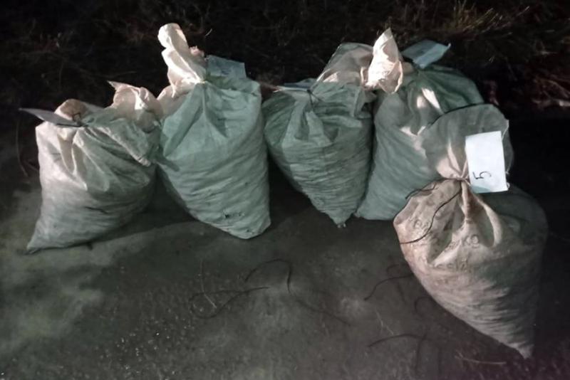 В Ростовской области раскрыли нелегальный промысел раколовов
