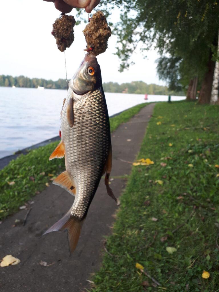 Бабье лето рыболова-2021
