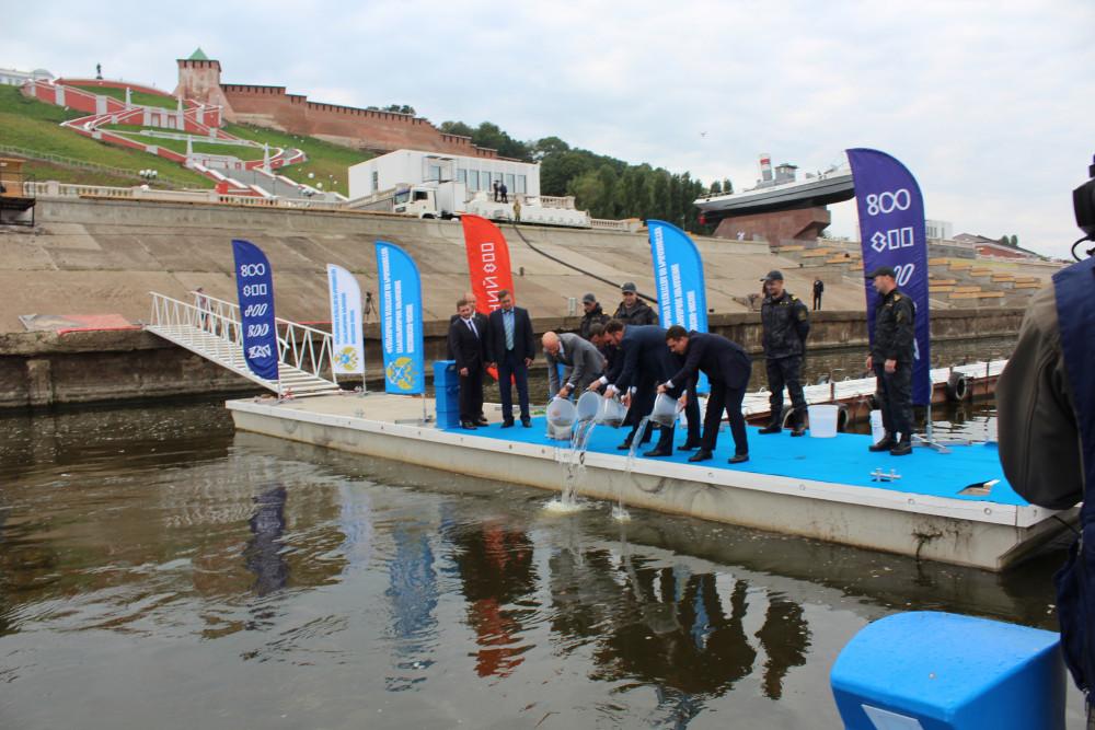 В Нижнем Новгороде в воды Волги выпустили десятки тысяч мальков стерляди