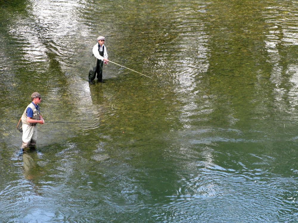 Неожиданная встреча на рыбалке