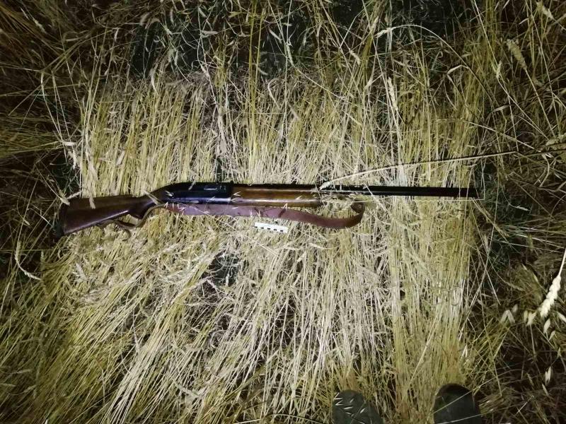В Тюменской области поймали подозреваемых в незаконной охоте на косуль