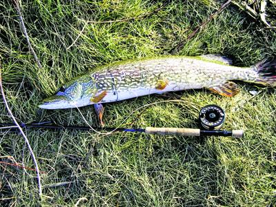 рыбалка на озере на щуку