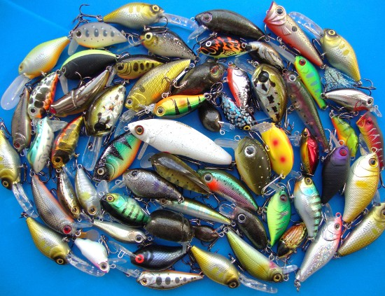 как сделать приманку для рыбы в кормушку