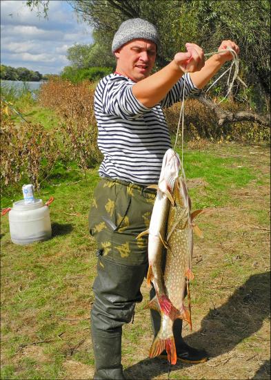 рыбалка в дикси